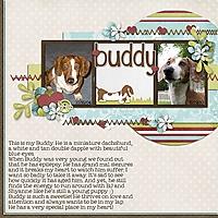 Buddy_.jpg