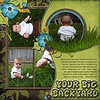 bigbackyard.jpg