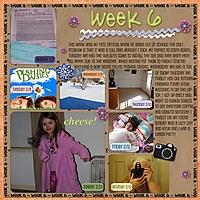 Week_6.jpg