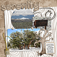 senerity_ss.jpg