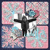 CraftTemp_WinterTime_GS_WinterFun_robin_web.jpg
