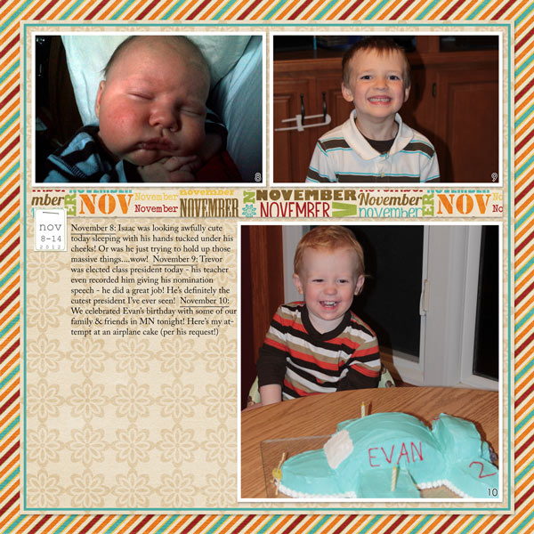 Project 2012: November 8-14a