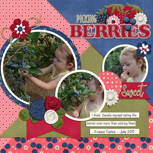 cap_berrysweet_berrypicking2015web