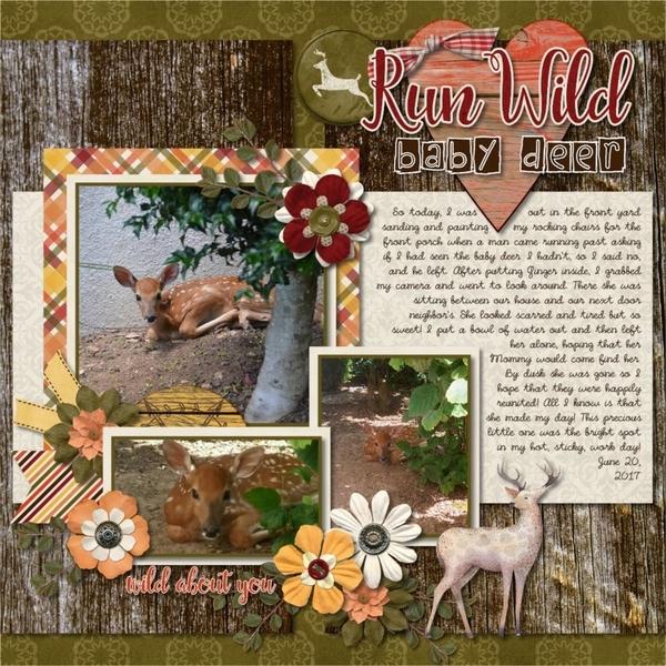 Run Wild baby deer