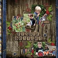 083111_Raspberries_-_Page_001.jpg