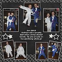2013_01_Karateweb.jpg
