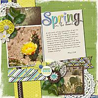 2014-05-01-springinthedesert_sm.jpg
