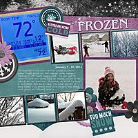 2014-Snowstorm-web.jpg
