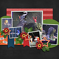 2015-01-10_-Circus-2.jpg