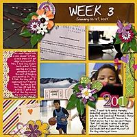 2015-01-11-week3_sm.jpg