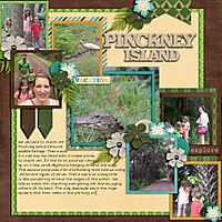 2015-07-06_-Pinckney-Island.jpg