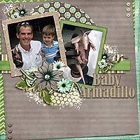 Armadilloweb.jpg