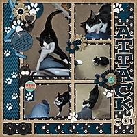Attack_Cat_500x500_.jpg