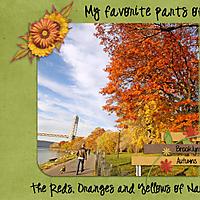 Autumn-ROYs-SJ-4-Web-Pg-1.jpg