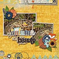 Autumn_Beauty_Moss_on_tree_stump.jpg