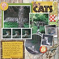 Big_Cats_small.jpg