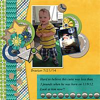 Braxton-web2.jpg