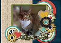 CS_Chessie.jpg