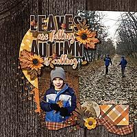 Camping_Bur_Oak_November_2015.jpg