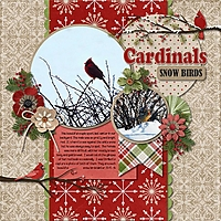 Cardinals_Snow_Birds.jpg