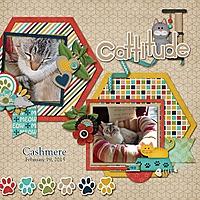 Cashmere_Cattitude.jpg