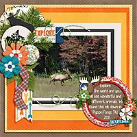 Elk-in-Pigeon-Forge_Sept-2011.jpg