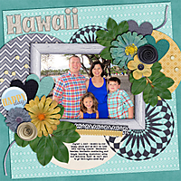 Family-Hawaii---Happy-Days.jpg