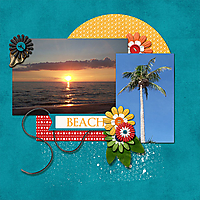 Florida_2005_Sunset_Palm_Tree.jpg