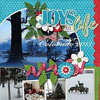 Joys_in_Life.jpg