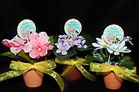 LC_mothers_flowers.jpg