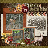 Oh_my_Deer_of_Acadia.jpg