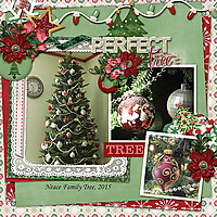 Perfect-Christmas-Tree-Dec-2015.jpg