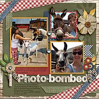 Photobombed-web.jpg