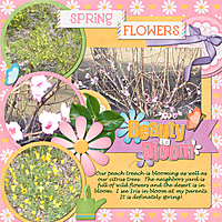 Project-2013-April--Spring-Flowers.jpg
