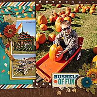 Pumpking-Picking-2013.jpg