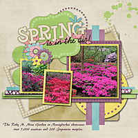 Spring_Is_In_The_Air_edited-1.jpg