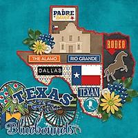 Texas_Bluebonnets_600x600.jpg