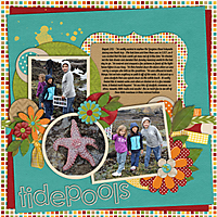 Tidepools---Project-2012-Sept.jpg
