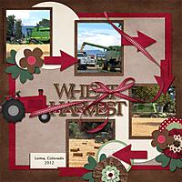 Wheat_Harvest_copy.jpg
