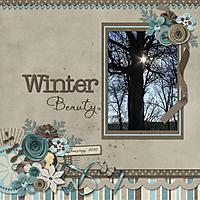 WinterBeauty_jenevang_web.jpg