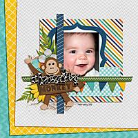 chunky-monkey.jpg