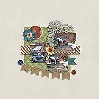 garden-projects-2.jpg