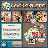 kookaburra-sit-in-the-old-gum-tree.jpg