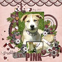 pretty-in-pink1.jpg
