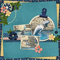 sdolphins.jpg