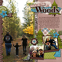 walk-in-the-woods.jpg