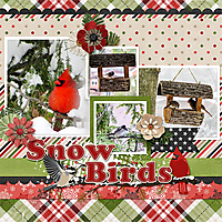 web_djp332_CAP-SnowBirds_cap_emptynesttemps1.jpg