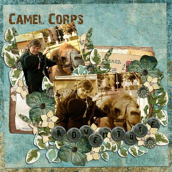 Camel Corps Adventure
