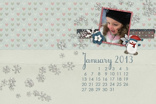 January 2013 DT