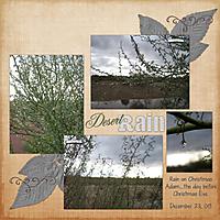 Desert_Rain_08.jpg